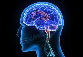 Neurosurgeon In Ahmedabad